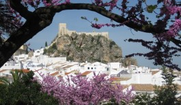 2016/11/09『スペイン周遊とアンダルシアの白い村』 NEW!