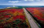 2018/10/03発紅葉の東カナダ~ミスクー島・プリンスエドワード島・メープル街道の旅