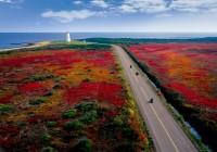 END『紅葉の東カナダ ミスクー島・プリンスエドワード島・メープル街道の旅』