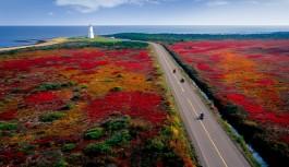 2017/09/27発『紅葉の東カナダ ミスクー島・プリンスエドワード島・メープル街道の旅』催行決定!