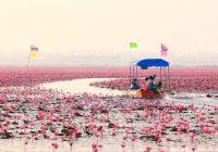 2020/01/15発紅い睡蓮の海とタイの癒しの町チェンカーンの旅 8日間