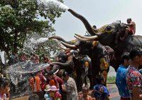 Fin.古都アユタヤで象と楽しむ水かけ祭りの旅 8日間