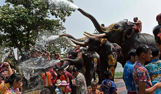 2020/04/12発古都アユタヤで象と楽しむ水かけ祭りの旅 8日間