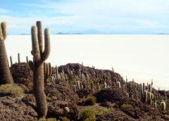 2020/08/20発乾季のウユニ大塩湖と色鮮やかな湖沼群探訪 12日間