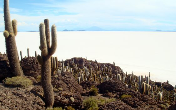 Fin.乾季のウユニ大塩湖と色鮮やかな湖沼群探訪 12日間