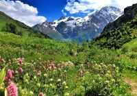 2020/07/21発南部ロシア・カフカスの旅エルブルース山国立公園と黒海沿岸ソチを訪ねて 10日間