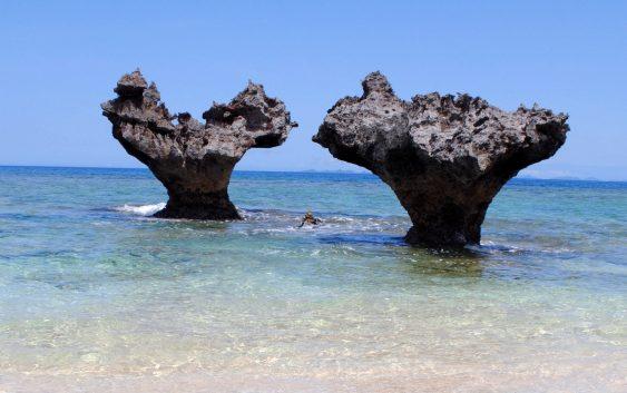 2021/07/01発沖縄本島大周遊~ 最北端のやんばる国立公園と古宇利島の旅 6日間