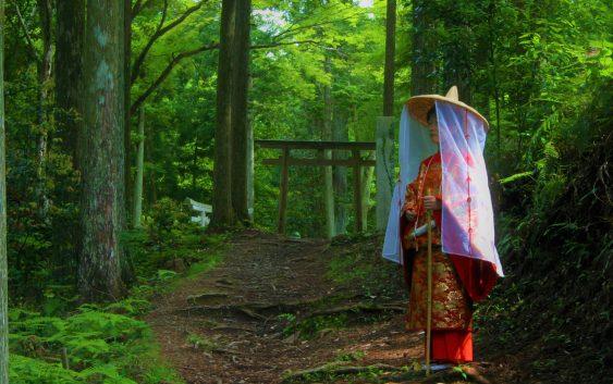 2021/11/01発紀州・和歌山周遊と熊野古道・高野山の旅 6日間
