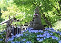 Fin. 「明月院ブルー」鎌倉アジサイ巡りと 「アナベルの雪山」・水郷佐原あやめ祭りの旅 4日間
