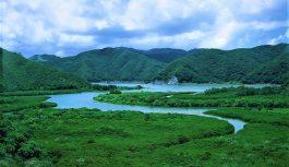 2021/09/01発世界遺産認定・奄美群島4島巡りの旅 8日間[決定間近]
