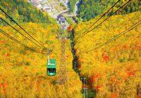 2021/09/26発大雪山 日本一早い紅葉へ秋の美食の旅 5日間[決定間近]